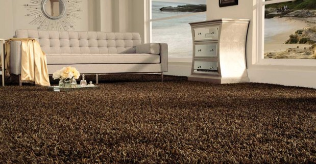 Bling-stainmaster-diablo flooring